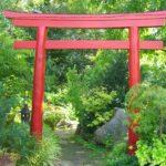 Erlangen-botanical-garden-torii